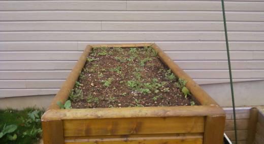 entretien jardin chatellerault