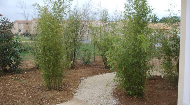terrassement plantation poitiers