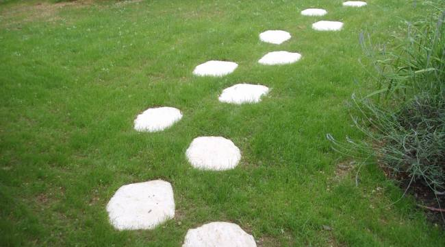entretiens jardins poitiers